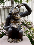 ../Chimpanzee Monkey Sculpture